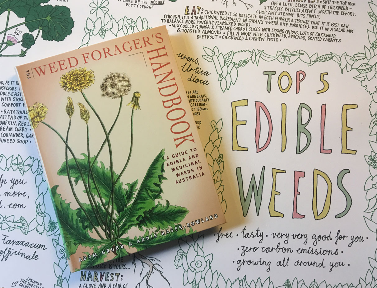 Edible weeds book and poster